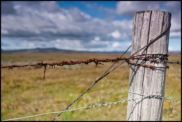 On the fence � Webalistic Photo